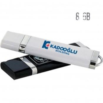 Usb Bellek ( 8 GB )